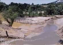 Učće Kriveljske u Borsku reku