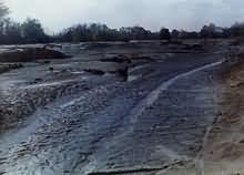 Poljoprivredno zemljište nasuto piritnom jalovinom