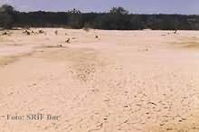 Degradirano poljoprivredno zemljište.